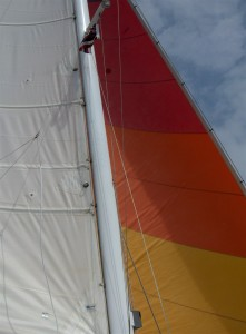 catamaran sail in the wind. Set Your Sails on Success
